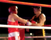 Uncover the Competition Before Stepping into the Ring