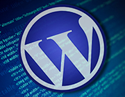 Understanding Effective Data Portability and Data Serialization in WordPress