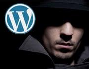 How to Identify WordPress Vulnerabilities
