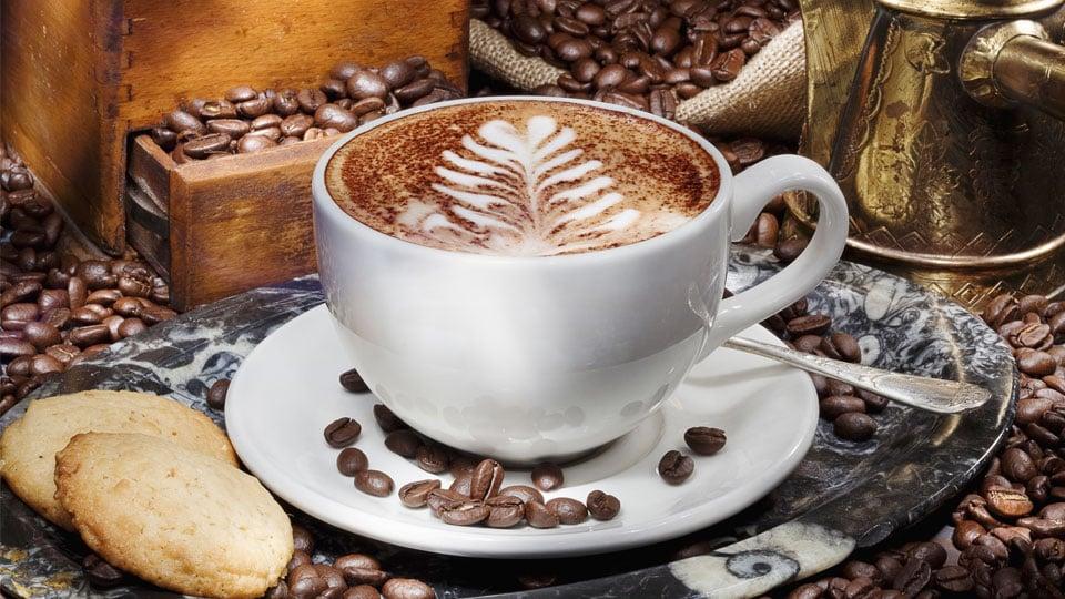 Invigorating Coffee-Inspired Website Designs