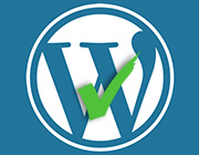 Tips to Test the Themes Used for WordPress Development