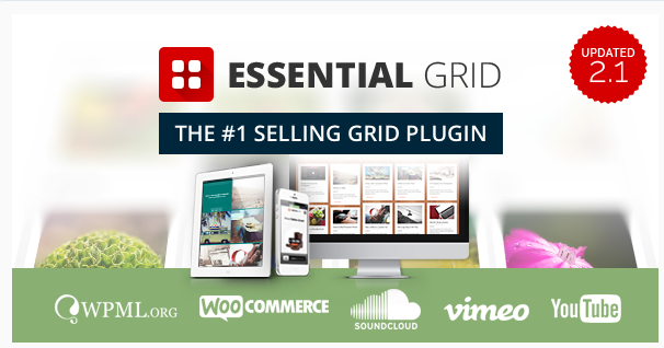 Essential Grid plugin