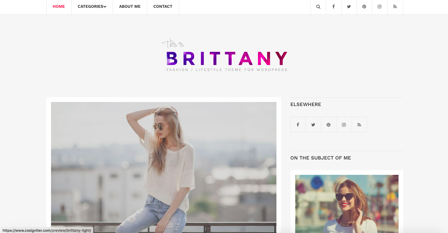 Brittany Light theme