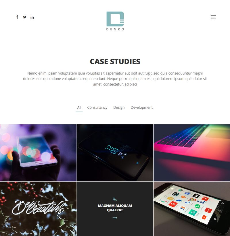 Denko WordPress Themes Case Studies