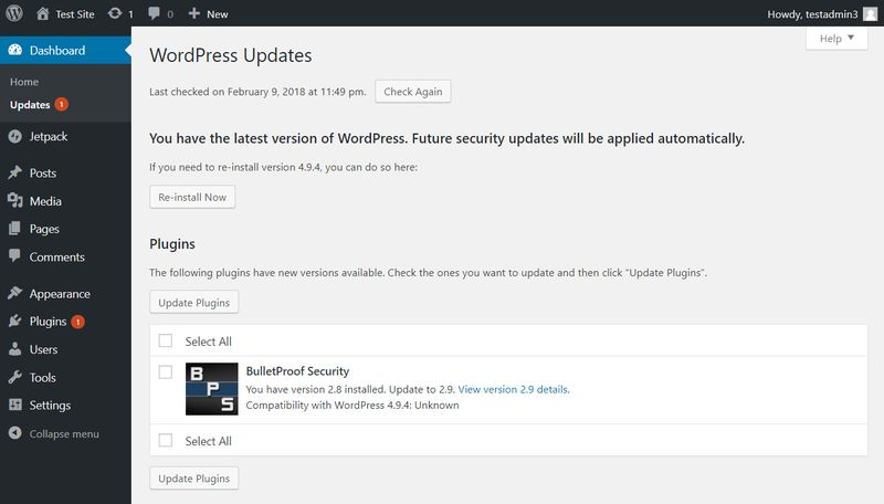 WordPress Security - Regular updates