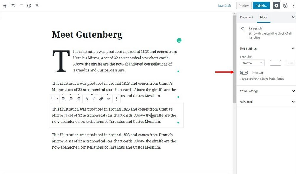 wordpress 5-gutenberg-editor- (5)