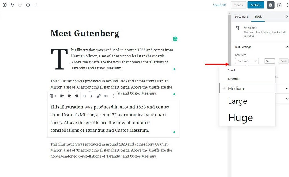 wordpress 5-gutenberg-editor- (6)