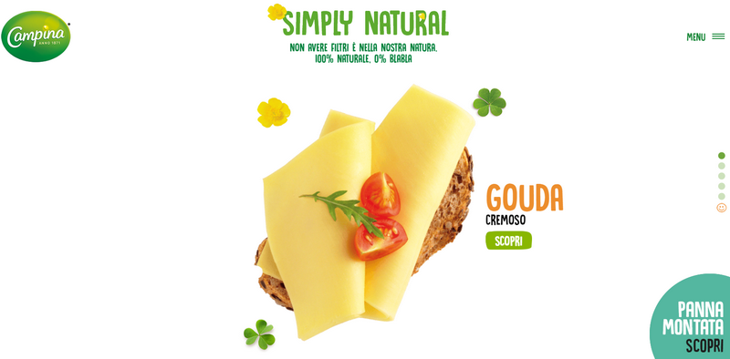 Campina - best examples of food websites
