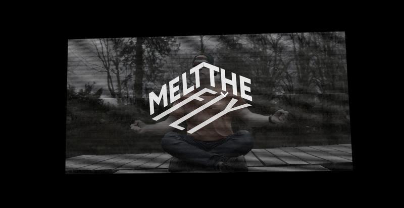 Melt the Fly